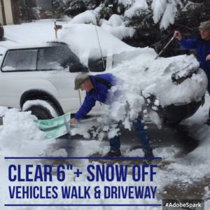 ClearSnowOffVehicles